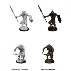 Dungeons & Dragons: Gnoll & Gnoll Flesh Gnawer